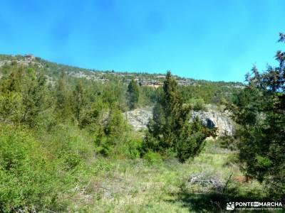 Río Cega,Santa Águeda–Pedraza;conocer gente madrid cuevas de aracena bosque de muniellos